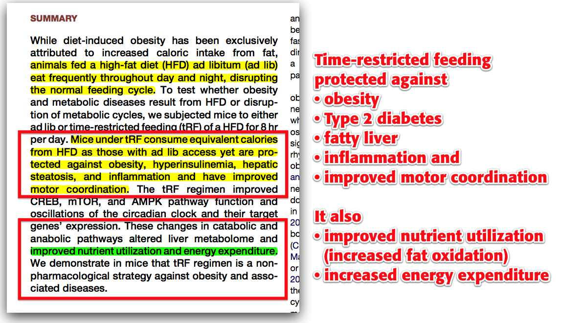 Time Restricted Diet in Obese or Overweight Pre or Postmenopausal Participants